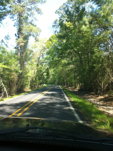 The scenery in rural Louisiana